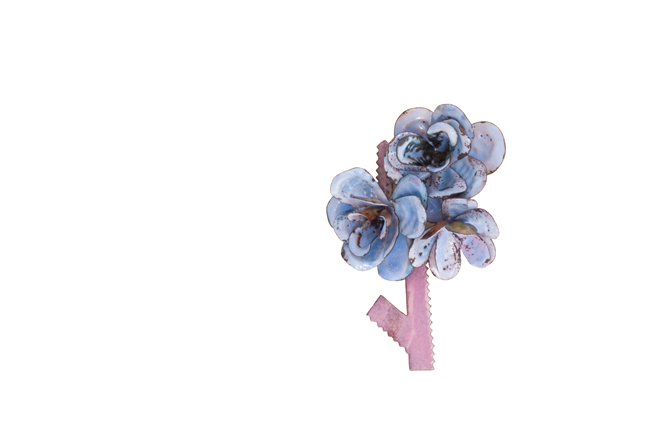 "brooch ""a l´eau de rose"""
